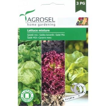 Семена на лента за три вида салати