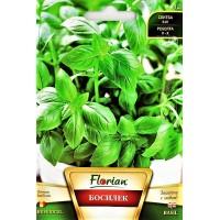Босилек / Ocimum basilicum