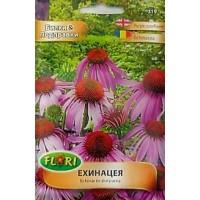 Ехинацея / Ehinacea purpurea