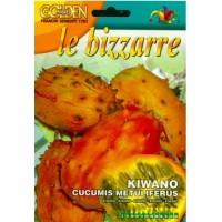 Кивано / Африканска рогата краставица (Cucumis metuliferus)