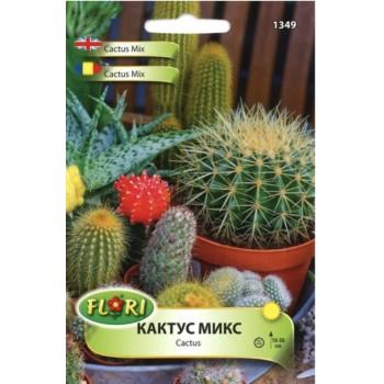 Кактус микс / Cactus mix