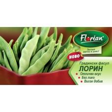 Фасул Лорин (зелен, плосък, нисък)- НОВ СОРТ
