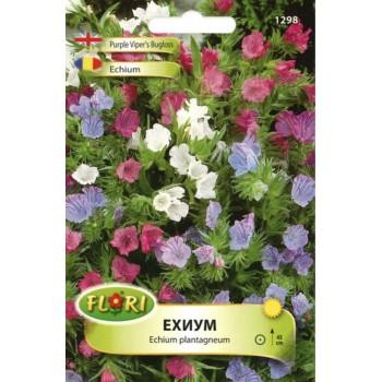 Ехиум (Усойниче) - Echium plantagineum