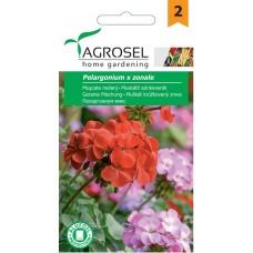 Семена за Мушкато (Pelargonium)