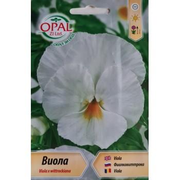 Семена за Виола (Теменужка) - Бяла / Viola x wittrockiana