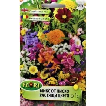 Микс от ниско растящи цветя