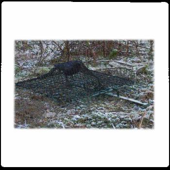 Капан - мрежа за птици