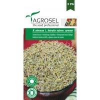 Семена Броколи за кълнове