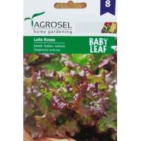 Бейби салата Лоло Роса - микро растение